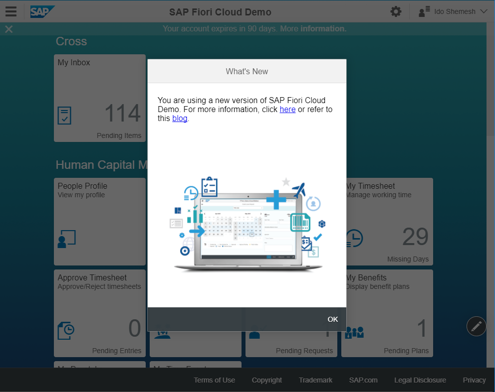Create a Welcome Popup for Fiori Launchpad and Freestyle