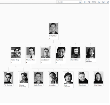 Customizing a Network Graph to Create an Org Chart | SAP Blogs