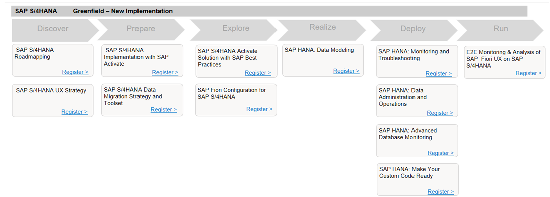 Support for SAP S/4HANA Implementation from Scratch in Six