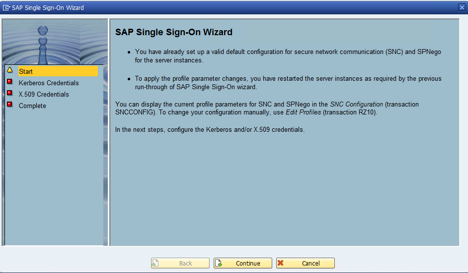 SAP Single Sign on (SSO) 3 0 configuration for SAP ABAP Application
