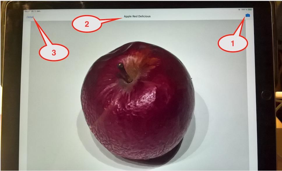Building an Intelligent SAP Fiori iOS App with Core ML | SAP