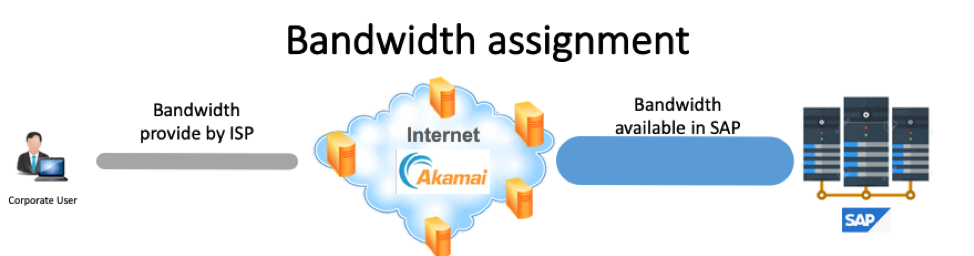 Potential causes of a slow SAP Cloud – By SAP's Raul Luzardo