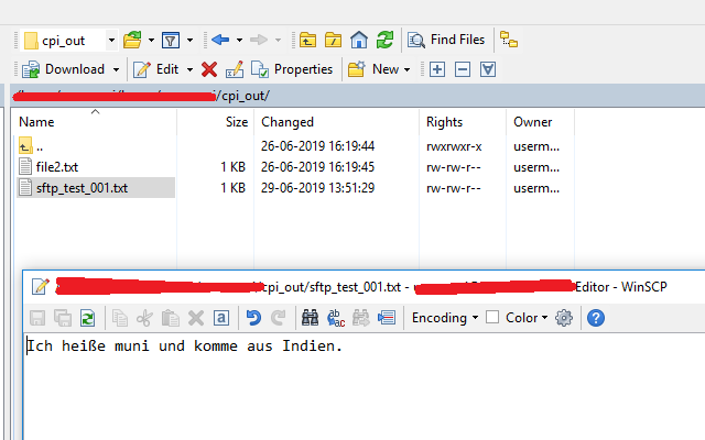 Try SFTP scenarios in CPI with your own SFTP server using
