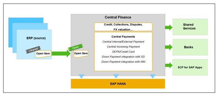 Central%20Payments%20in%20CFIN