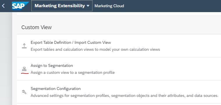 Assign%20Custom%20View%20to%20Segmentation