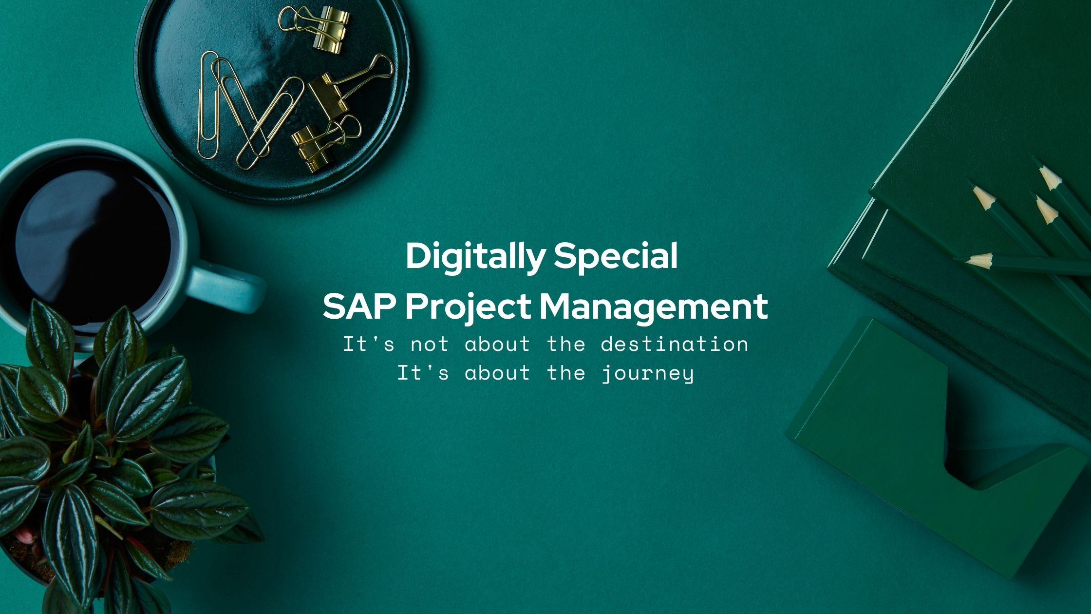 Digitally%20Special%20SAP%20Project%20Management