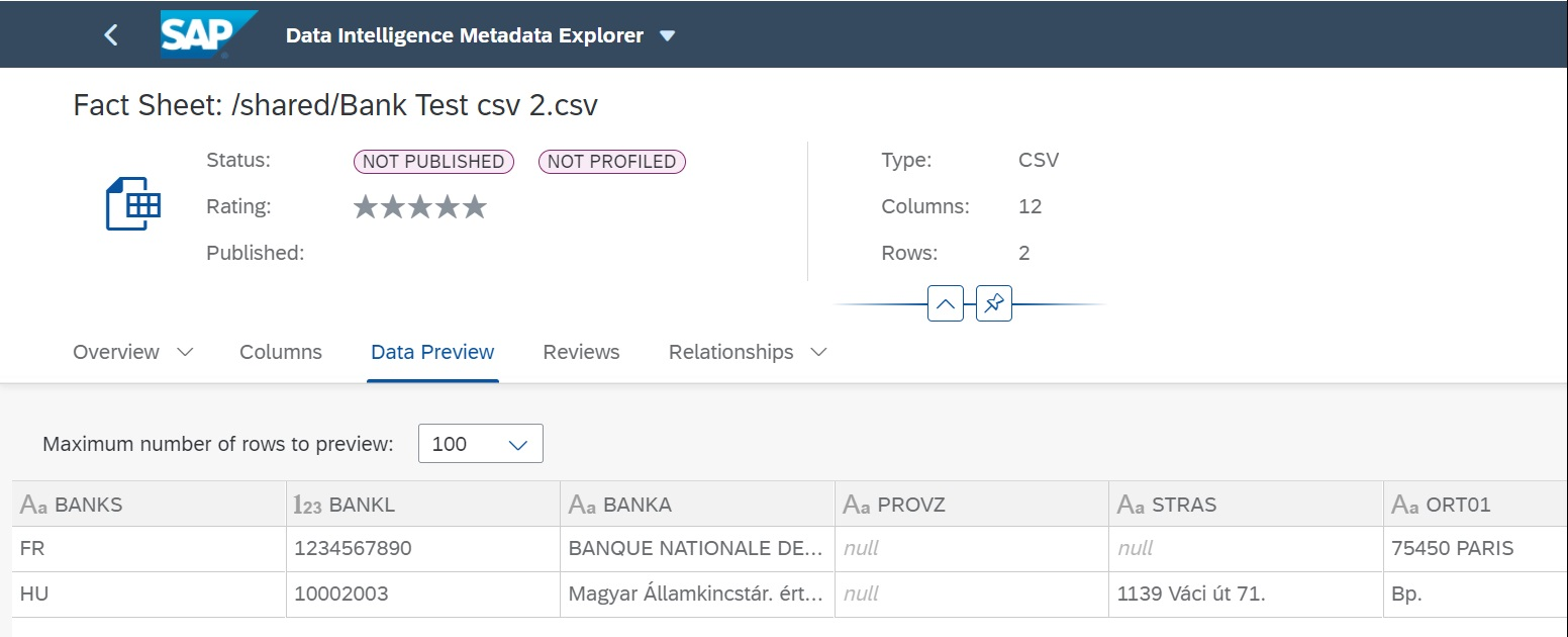Data%20Preview%20of%20the%20File%20in%20Metadata%20Explorer