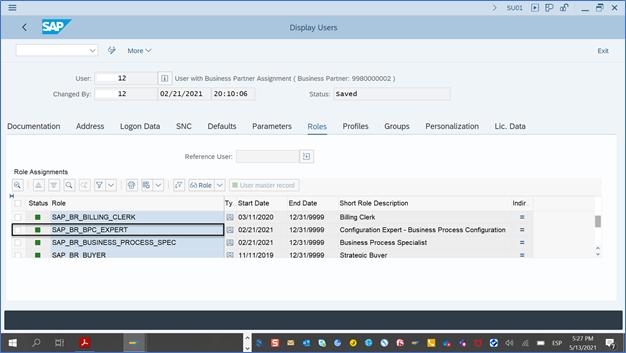 SAP_BR_BPC_EXPERT%20Role