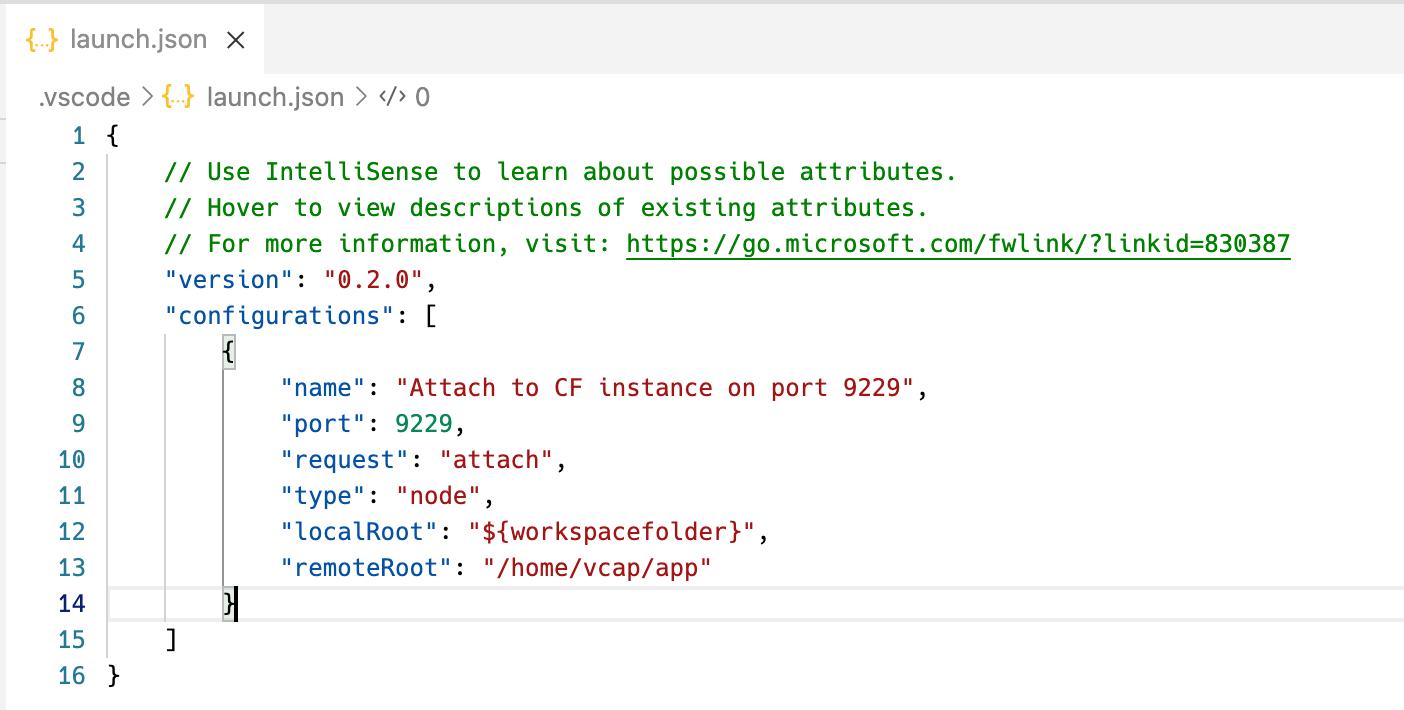 VS Code Debug Configuration