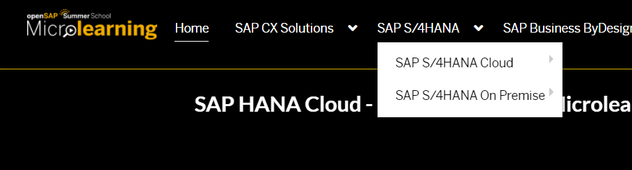 SAP%20S/4HANA%20Dropdown%20Selections