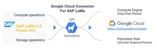 SAP%20LAMA%20and%20Google%20Cloud