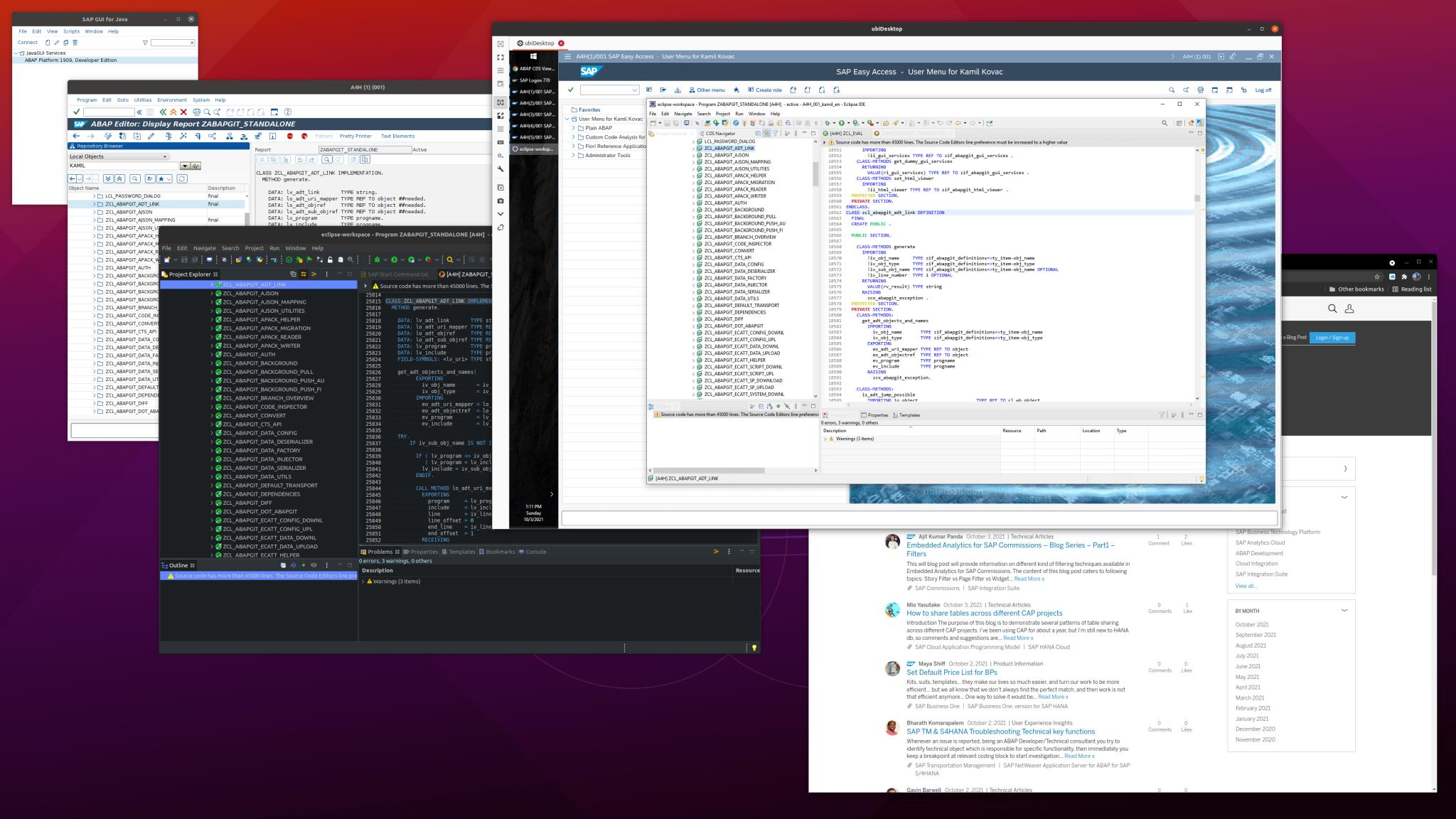 Linux%20and%20apps.%20SAP%20Gui%2C%20Eclipse%2C%20Remmina%20remote%20access